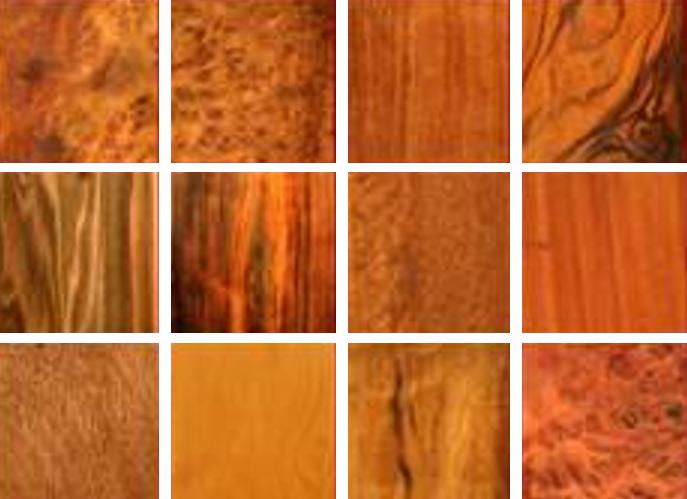 cgsmusic: Alternative Wood Choices for the Classical Guitar