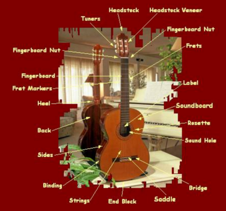 Classical Guitar Master Class