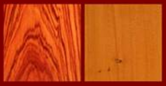 Tulipwood, Yew for the Classical Guitar