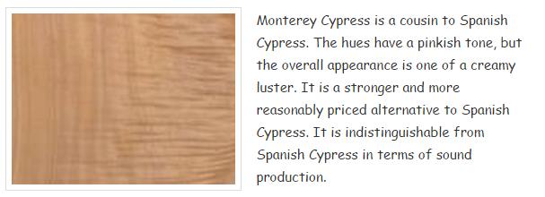 cgsmusic- Monterey Cypress